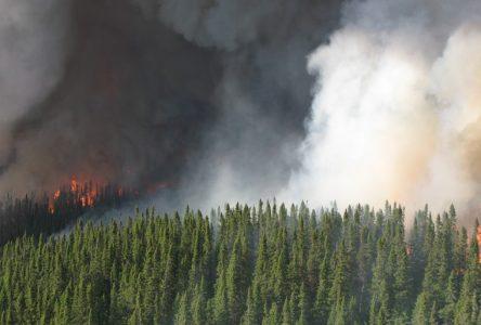 Le MRN veut un post-mortem sur les feux de forêt de 2013