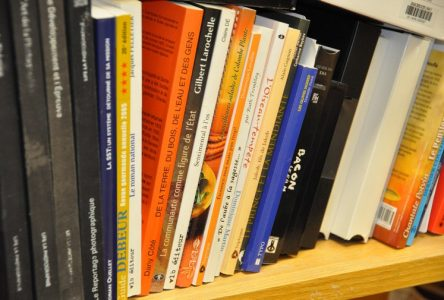 Des prêts pour emporter à la bibliothèque de Dolbeau-Mistassini