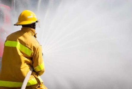 Incendie à Saint-Thomas-Didyme : des centaines d'animaux retrouvés
