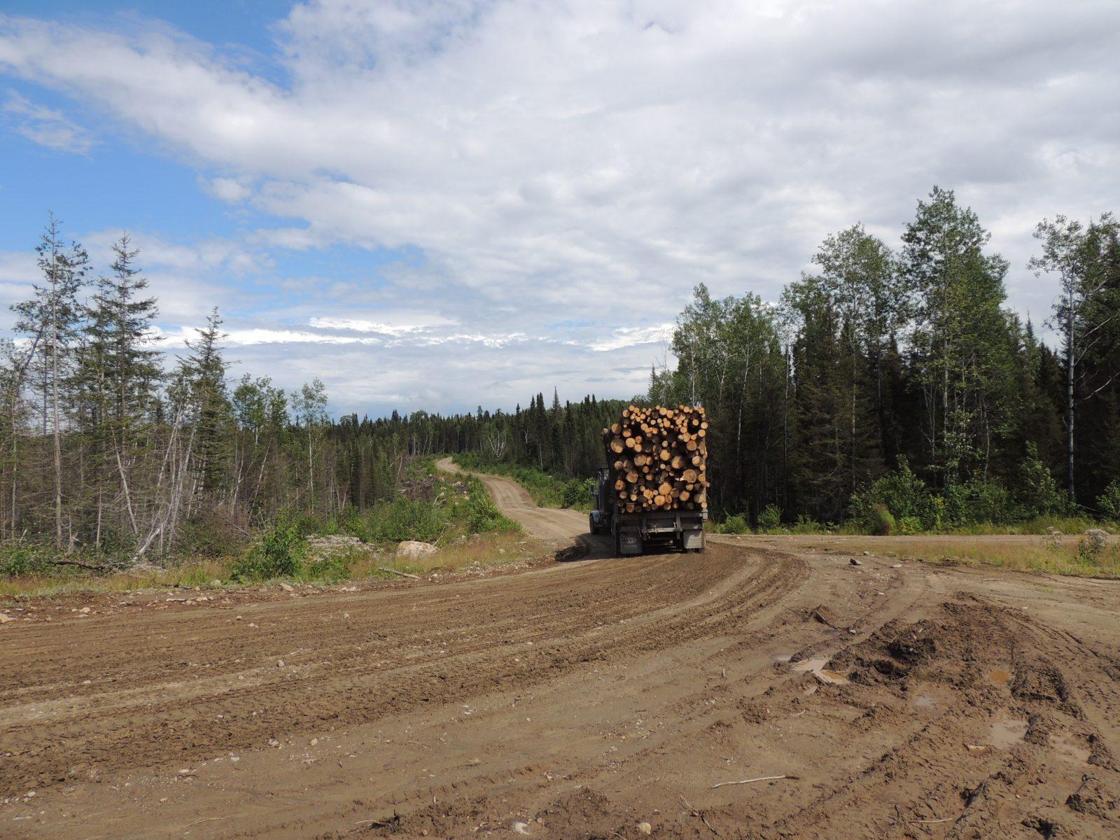 Chemins forestiers : Québec doit s'impliquer financièrement, croit la MRC