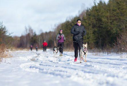 Canicross : le plaisir de faire des sorties plein air avec son chien