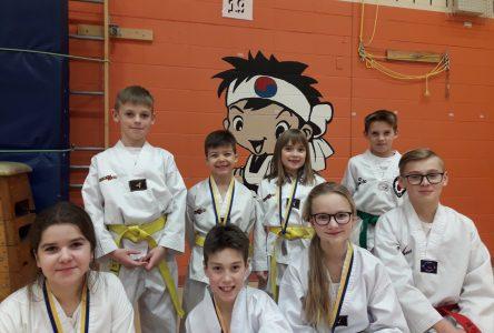 Taekwondo : fort début de saison pour les Dolmissois