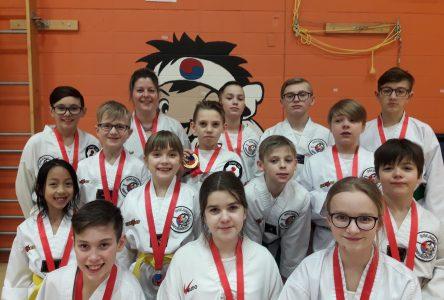 Taekwondo : 15 médailles pour le club dolmissois