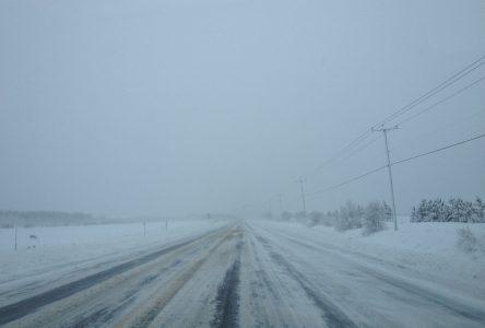 Haies brise-vent le long des routes : la MRC réclame des actions