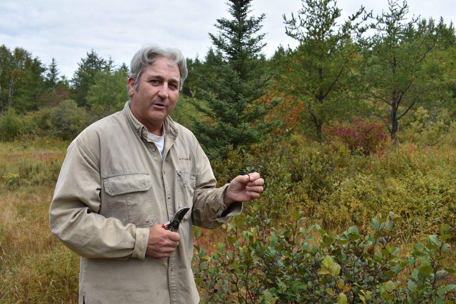 Fabien Savard cueille les trésors de la forêt boréale
