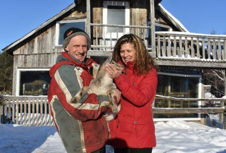 La Petite ferme à Orace : propager l'amour des animaux