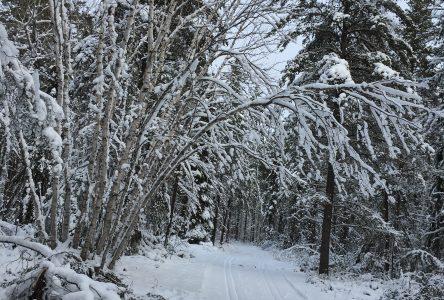 Sentiers Racine-Vauvert : un paradis pour skieurs, marcheurs et raquetteurs