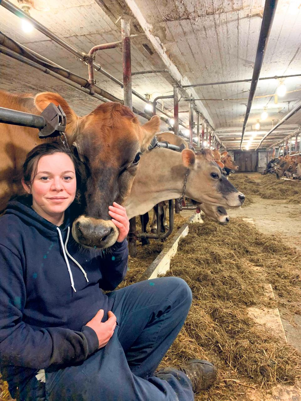 Acquisition d'une ferme laitière : Ferme du vanil Jersey  –  Seule… avec un troupeau de 70 bêtes