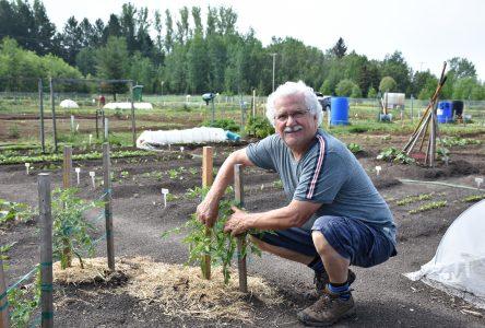 Jardins communautaires de la Trappe: Les mains dans la terre le cœur sur la main