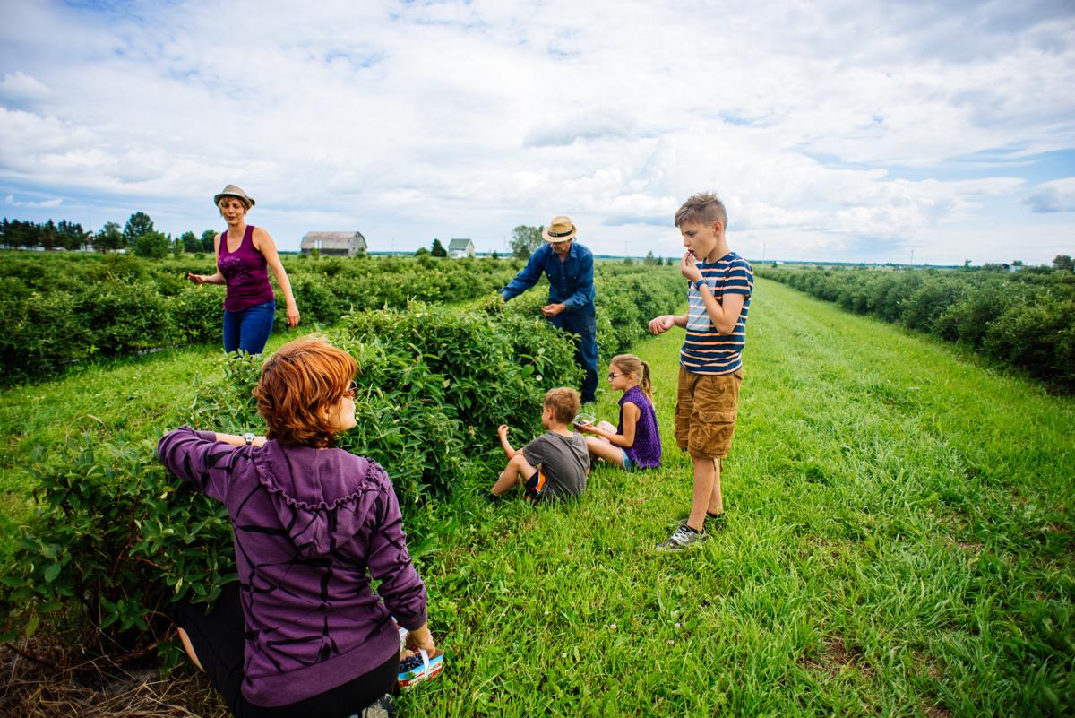 Effet COVID-19 : L'agrotourisme a la cote!