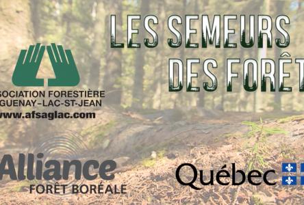 Semeurs des forêts : L'attachement de la région dans une série télé