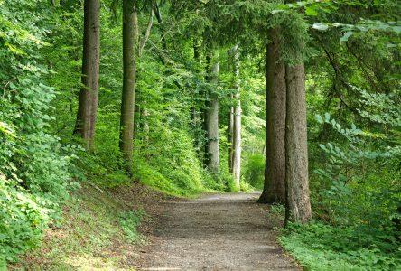 Un sentier pédestre pour les 100 ans de Girardville