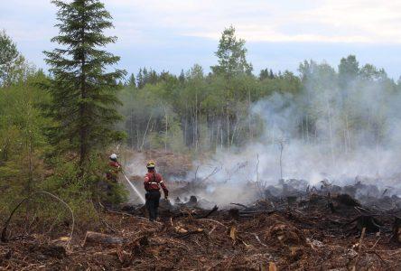 Le feu de forêt d'Albanel n'était pas dû à l'activité forestière