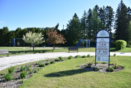 Parcs et espaces verts : Dolbeau-Mistassini amorce ses consultations